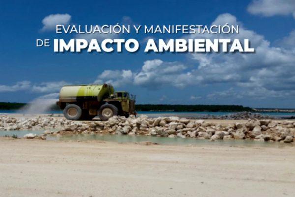 img-accion-ambiental-1